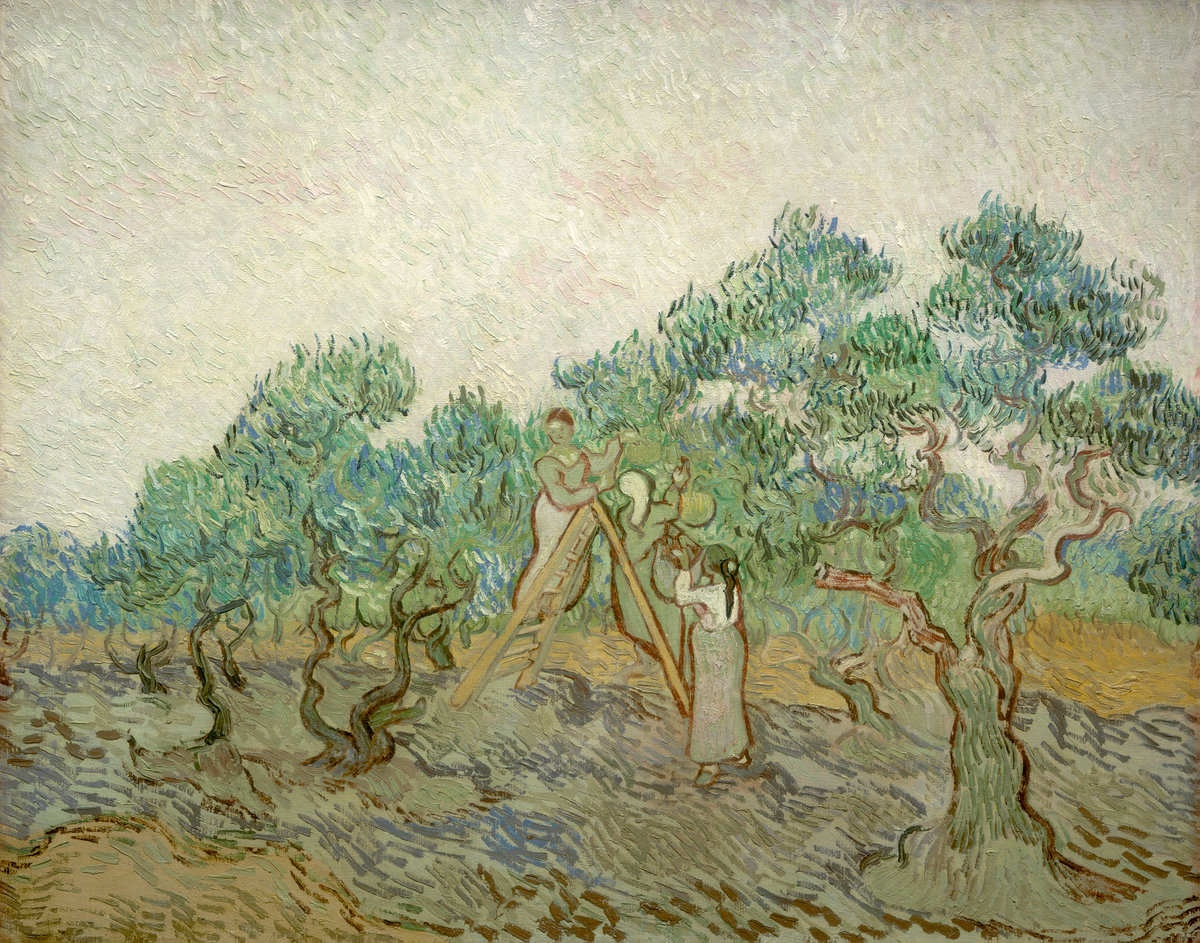 Vincent Van Gogh, The Olive Orchard 1889